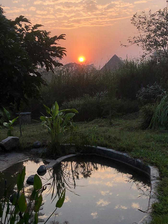 2782804d3ac Kibale Forest edge. Sunset pond. PHOTO Julia Lloyd